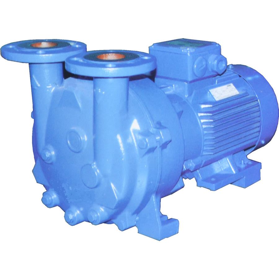 2BV/LV水環真空泵